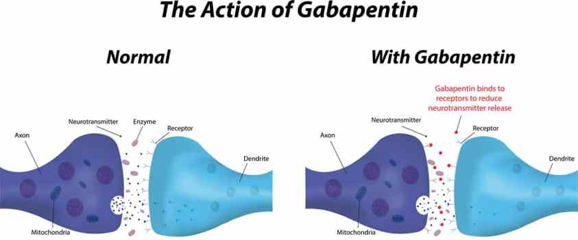 signs someone is addicted to gabapentin