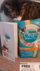 Purina One: Smart Blend Cat Food Review!