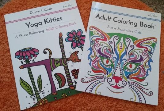 Pair of Cat Coloring Books
