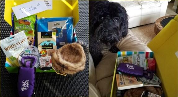 Pet Treater June Contents