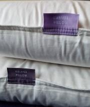carmel-and-helena-pillow