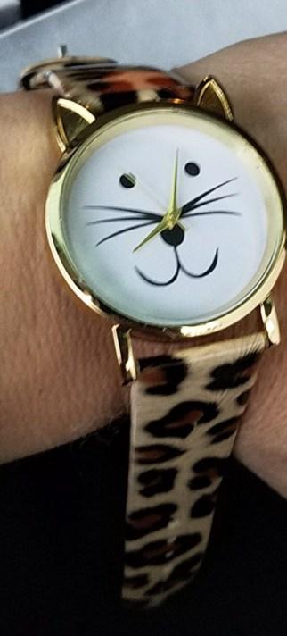 cat-watch