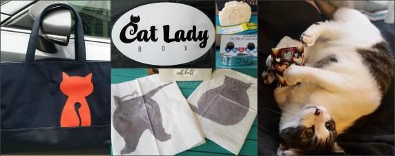 catladybox-2016-wrapup