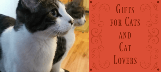 holiday-cats-and-cat-lover