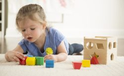 Wooden Toy With 12 Shapes 2