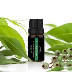 Aromatherapy Top 6 Essential Oils Set 3
