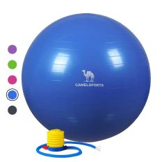 Thick Exercise Ball with Quick Pump