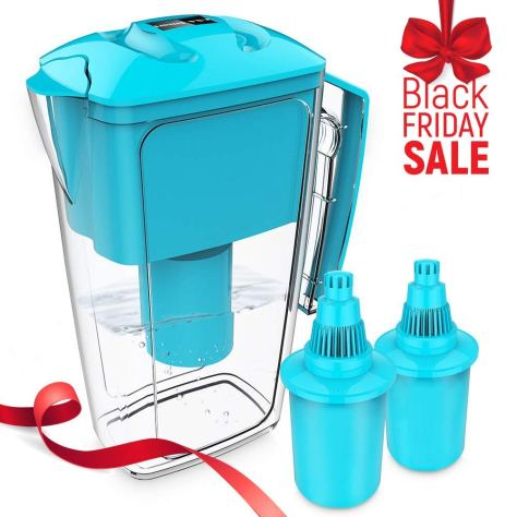 10 Cup Long-Lasting Water Filter Pitcher with Two x 60-Day Filters