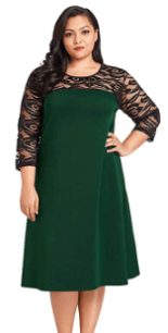 Women's Plus Size Lace Sleeve Dress.png 1.png3