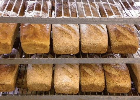 Great-Harvest-Bread-Co.jpg