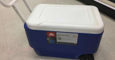 Igloo 38-Quart Wheelie Cooler Only $18.74 at Target (Regularly $25)