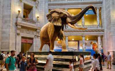 FREE Museum Tickets (September 21st Only) – Reserve Yours Now!
