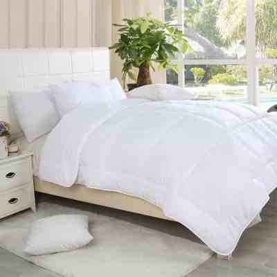 Jane: Waterford Home Down Alternative Comforter, Just $29.99 (Reg $39.99)