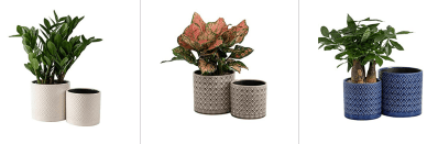 Amazon: KYY Ceramic Planters Garden Flower Pots Just $16.99