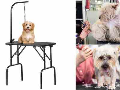 Walmart: SmileMart Adjustable Pet Grooming Table Just $56 + FREE Shipping