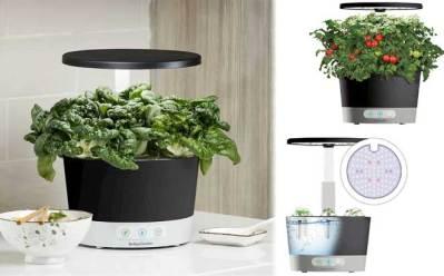 Best Buy: AeroGarden Harvest 360 6-Pod with Seed Pod Kit ONLY $94 (Reg $150)