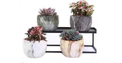 Amazon: Set of 4 Ceramic Flower Pot Succulent Cactus Bonsai $8.99 ($18)