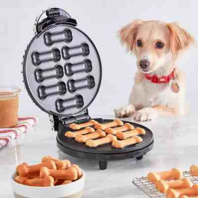 Kohl's: Dash Dog Treat Maker For $19.99 At (Reg.$39.99 )