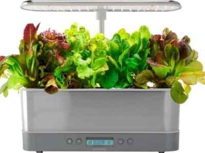 BESTBUY: AeroGarden - Harvest Elite Slim 6-Pod - Heirloom Salad - Stainless For $99.99 A Reg.$179.99
