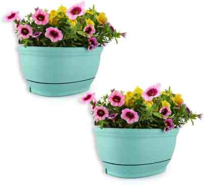 Amazon: Wall Mounted Flowers Plant Basket For $7.99