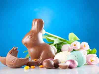 Big Lots: FREE Chocolate Bunny for Rewards Members