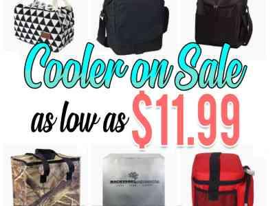 Wayfair: Cooler On Sale, as low as $11.99!