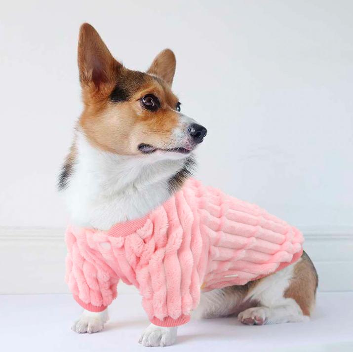 5 cheap woolen female dog coats to buy on AliExpress