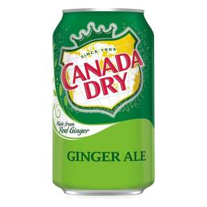 Canada Dry Ginger Ale Soda Soft Drink Can 355ml X 2 Cans