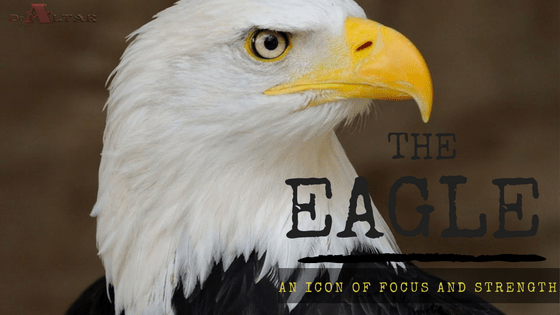 The Eagle: An Icon Of Focus And Strength
