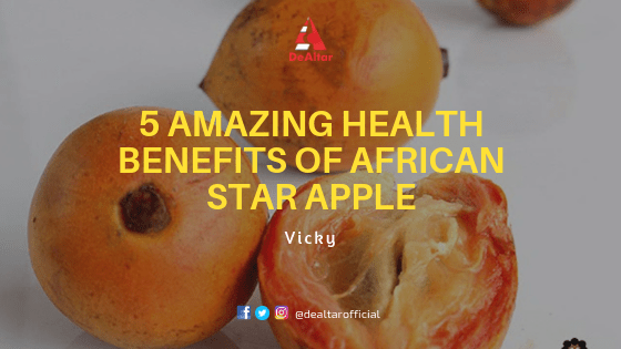 5-amazing-health-benefits-of-African-Star-Apple-Agbalumo-dealtar