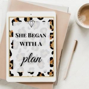 Quickstart Business Plan Cheetah Cover