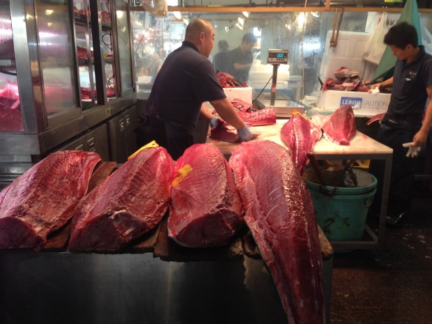 Fresh Tuna being portioned at the Tsukiji Fish Market, Tokyo, Japan.