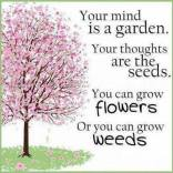 Your Mind Is A Garden