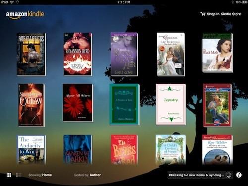 Kindle Shelf