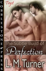 TheSubtleBuildofPerfection_300X454
