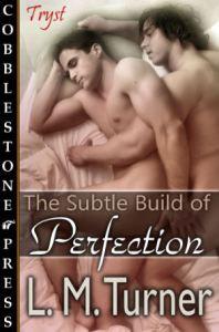 TheSubtleBuildofPerfection_300X454
