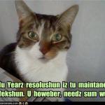 funny-pictures-my-nu-yearz-resolushun-iz-tu-maintane-my-perfekshun-u-howeber-needz-sum-wurk1