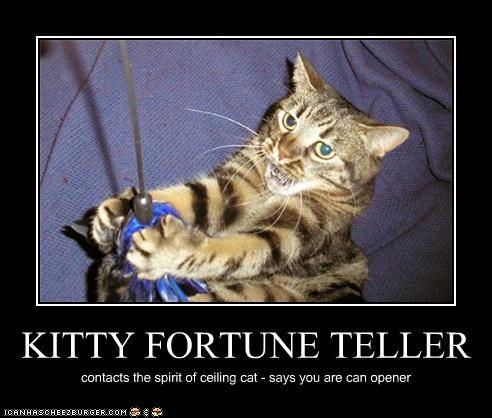 Fortune Teller Cat