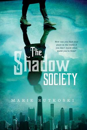 The Shadow Society Marie Rutkoski