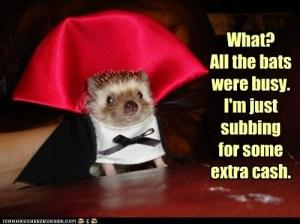 Hedgehog substitute