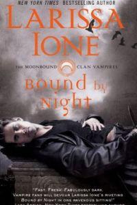 Bound by Night by Larissa Ione
