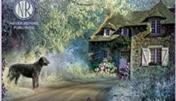 Fiction Book Review  A Painted House by John Grisham  Author     The Underground Railroad