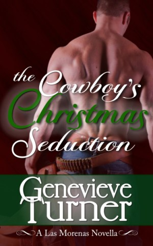 ChristmasCoverTest1 copy
