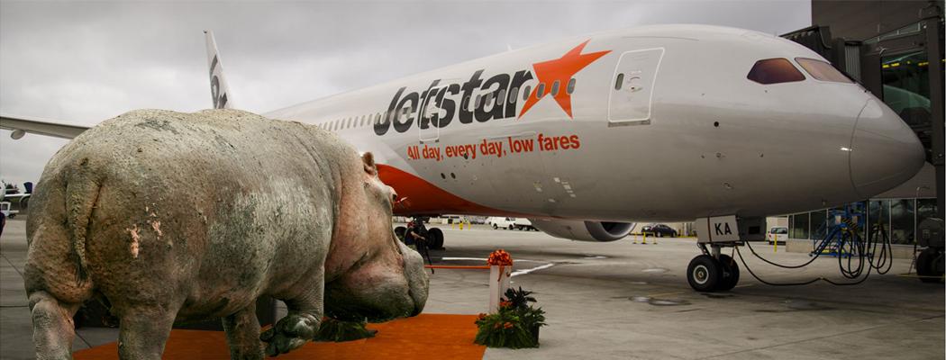 Jetstar hippo