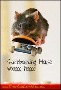 Mice Skateboard in Australia