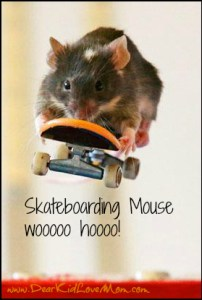 Mice Skateboard in Australia