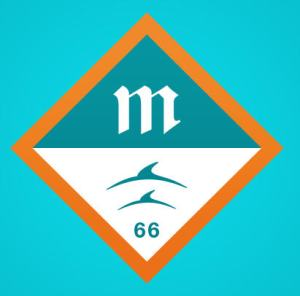 Miami Dolphins alternative logo