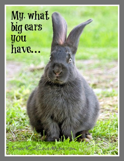 My what big ears you have... DearKidLoveMom.com