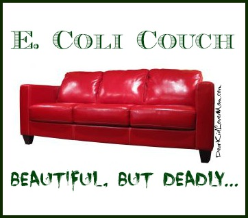 E Coli Couch Beautiful but Deadly DearKidLoveMom.com