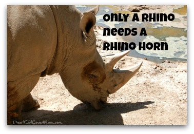 Only a rhino needs a rhino horn. Save the rhinoceroses. DearKidLoveMom.com